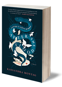 After the Flood: A Novel Cover