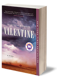 Valentine: A Novel Cover