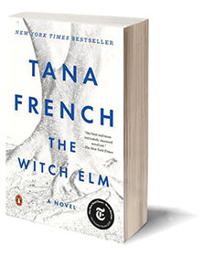 The Witch Elm: A Novel Cover