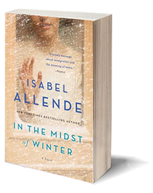 In the Midst of Winter: A Novel Cover